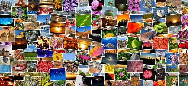 Всички видове фотография